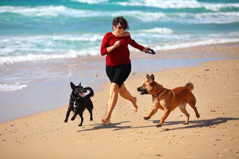 dogs woman running beach